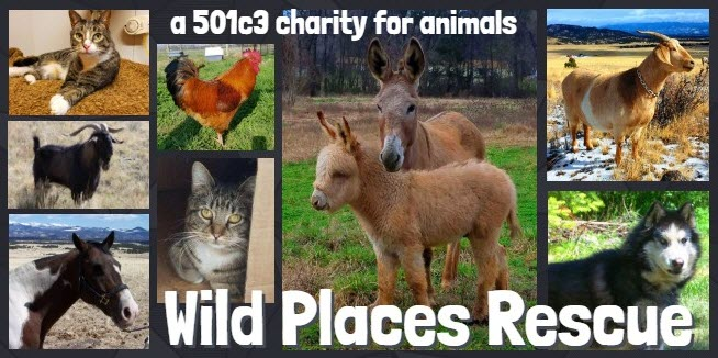 Wild Places Rescue